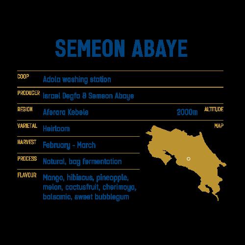 Semeon Abay Ethiopia - Keen Coffee